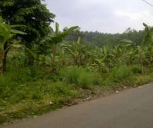 Dijual Tanah 8015 Meter di Belakang Perumahan Bukit Sentul, Bogor P0924