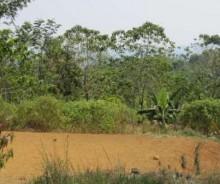 Dijual Tanah Strategis Luas 22.794 Meter di Sukabumi PR751