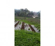 Dijual Tanah Luas 2 Hektar di Bojong Koneng, Bandung AG1085