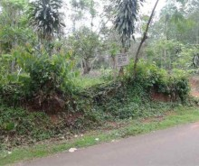 Jual Tanah 5000 Meter Pinggir Jalan Besar Hot Mix di Jonggol, Bogor PR1038