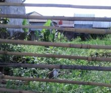 Dijual Tanah 307 m2 SHM di Bandung PR1297