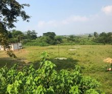 Dijual Tanah Pinggir Jalan Cicau, Kawasan industri Cikarang P0930