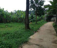 Dijual Tanah Kavling  Cocok untuk : Rumah Tinggal , Kontrakan, Kosan ,Investasi P0941