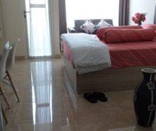 Disewakan Apartemen Menteng Park Tipe Studio Full Furnished AG1223